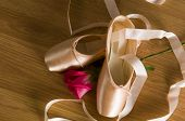 Ballet Shoes And Rose