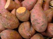 Sweet Potatoes At An Outdoor Market In Paris
