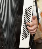 image of accordion  - Photograph musical instrument called accordion man hand over the keys - JPG