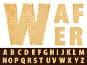 vector wafer alphabet