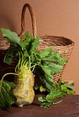 picture of kohlrabi  - the Fresh Raw Kohlrabi Vegetable and basket