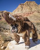 A bulldog dressed as a mammoth