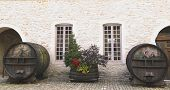 An old painted wine barrels in Chateau de Pommard, France