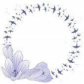 Crocus And Swallow, Frame