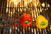 Colorful  Bell  Peppers  On The Hot Bbq Cast Iron Grill