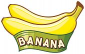 picture of bunch bananas  - banana label vector design on white background - JPG