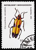 Postage Stamp Malagasy 1994 Chrysochroa Mirabilis, Insect