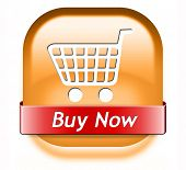 buy now button and here online sales sell on internet shop online shop buy and add to cart sign shop