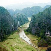 Rice fields and limestone rocks in the early morning at Tam Coc near Ninh Binh Vietnam