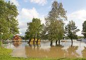 Sava River Flood