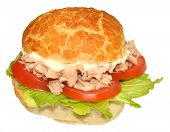 Fresh Tuna Fish Sandwich Roll
