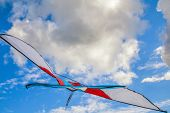 Colorful kite on blue sky background