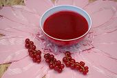 Red Currant Sauce