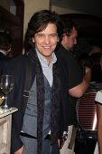 LOS ANGELES - NOV 4:  Michael Damian at the Hallmark Channel's