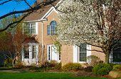 Springtime Residence