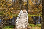 White Wooden Bridge, The Park Of The Estate Mikhailovskoye, Pushkinskiye Mountains