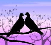 stock photo of compassion  - Love Birds Meaning Compassionate Romance And Fondness - JPG