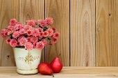 Tin pot of pink mums by red pears and rustic wooden background