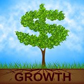 Growth Tree Means American Dollars And Banking
