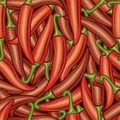 Seamless chili pepper background. Vector