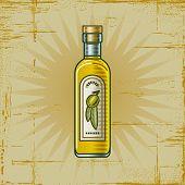 Retro Olive Oil Bottle. Vector