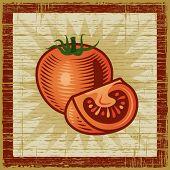 Retro tomato. Vector