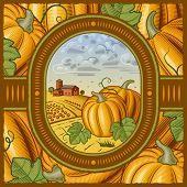 Pumpkin harvest. Vector
