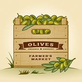 Retro crate of olives. Editable EPS10 vector illustration with clipping mask and transparency.