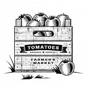 Retro crate of tomatoes black and white. Editable vector illustration with clipping mask.