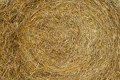 Bulk of straw