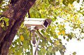 the cctv camera