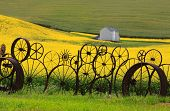 Fence of wheel rims against rapeseed farms