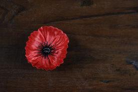 foto of lapel  - Lest We Forget Red Flanders Poppy Lapel Pin Badge for November 11 Remembrance Day appeal on dark recycled wood background with copy space - JPG