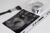 foto of criminology  - Disclosure of forensic evidence using fingerprint powders - JPG