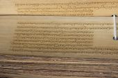 image of sanskrit  - ancient Buddhist mantras on the bamboo leaf - JPG