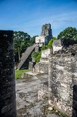stock photo of mayan  - View of Mayan historic building at Tikal Jungle. Guatemala.