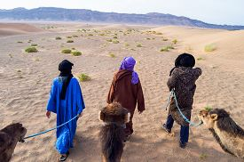 image of camel  - Cameleer  - JPG