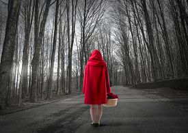 picture of hoods  - little red riding hood lost in the forest  - JPG