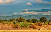 African savanna, Queen Elizabeth National Park, Uganda