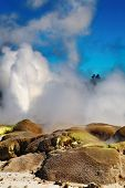 Pohutu Geyser eruption, New Zealand