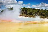 Artist's Palette pool, hot thermal spring, Rotorua, New Zealand