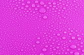 Water Drops On Pink