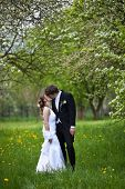 image of wedding couple  - young wedding couple  - JPG