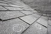 Old roof with hail damage, chalk circles mark the damage. Shallow depth of field poster