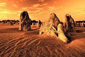 The Pinnacles - Numbung National Park, Western Australia