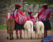stock photo of alpaca  - Peruvian Girls and Alpacas at Sacsayhuaman - JPG