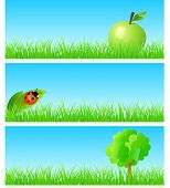 Vector triptych of objects on detailed grass. Apple, ladybird on a leaf, tree. Concept of new ecolog