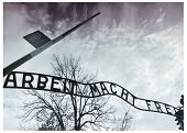 Auschwitz Main Gate Sign 4 Gradient