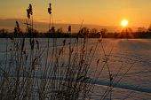 Sunset IV.