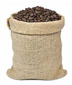 Roasted Coffee Beans Falling In A Burlap Sack. Sackcloth Bag With Coffee Beans, Isolated On White Ba poster